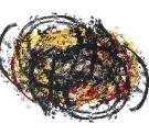 Untitled Image 2007-018